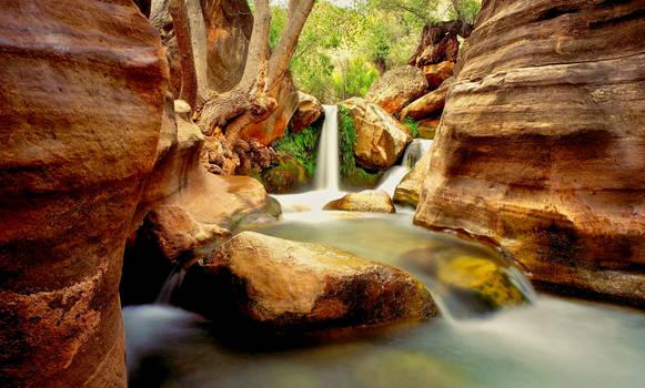 Grand Canyon, Deer Creek