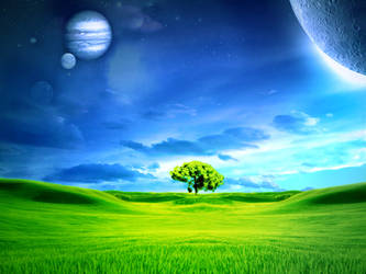 tree ground by jas-one