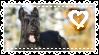 Scottish Terrier Stamp by browncollie
