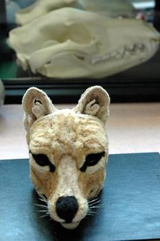 Thylacine Sculpture WIP