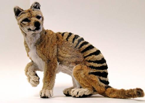 Small Thylacine