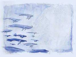 whale pod by Mensaman