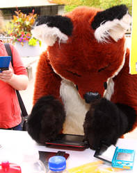 Softfox paw-fails at 3DS