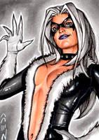 Black Cat - Sketch Card by J-Redd