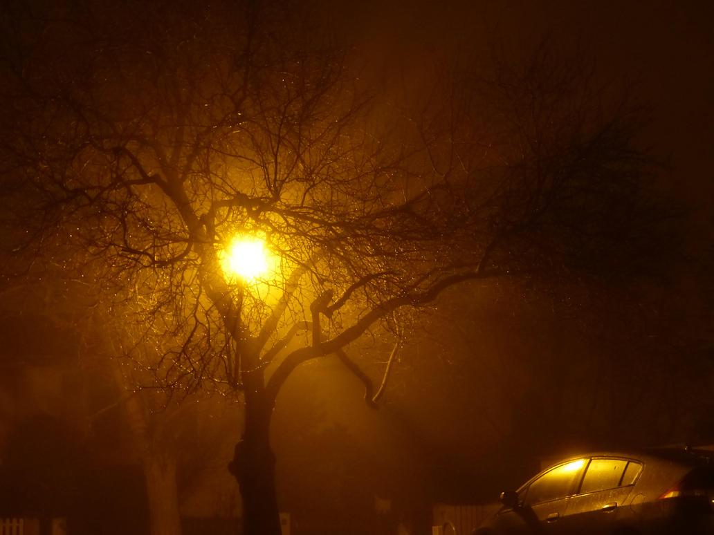 Midnight Light by KasugaKaoru