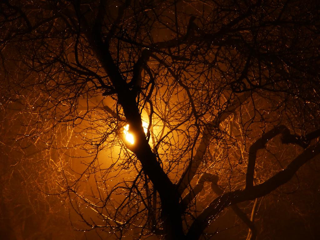 Midnight Light (second angle) by KasugaKaoru