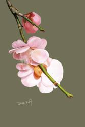 flower by sense983