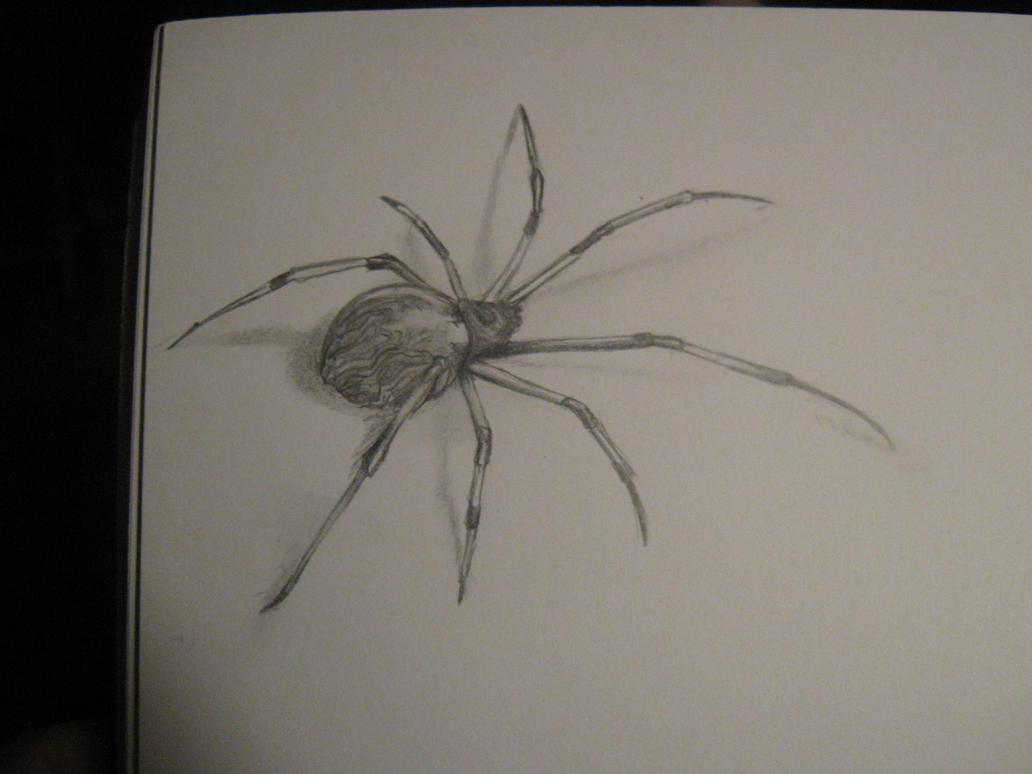 Spider in sketchbook (tattoo) by Pictrixel on DeviantArt