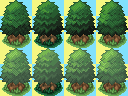 Fresh Tree's by Sihlas