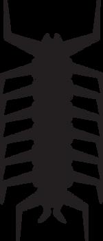 Vanadium Centipede Symbol by BulldozerIvan
