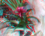 A Purple Flower 3D Red-Cyan
