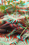 Do You Like Turtles? 3D Red-Cyan