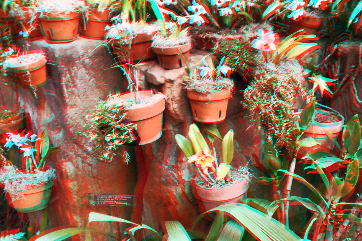 Lots of Pots 3D Red-Cyan