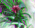A Purple Flower 3D Trioscopics