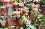 Lots of Pots 3D Trioscopics