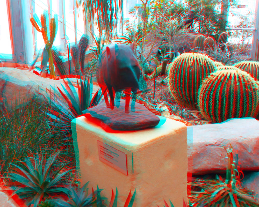 Hogging the Show 3D Red-Cyan