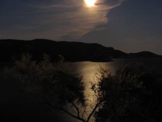 Night Landscape by XS-Tarsier
