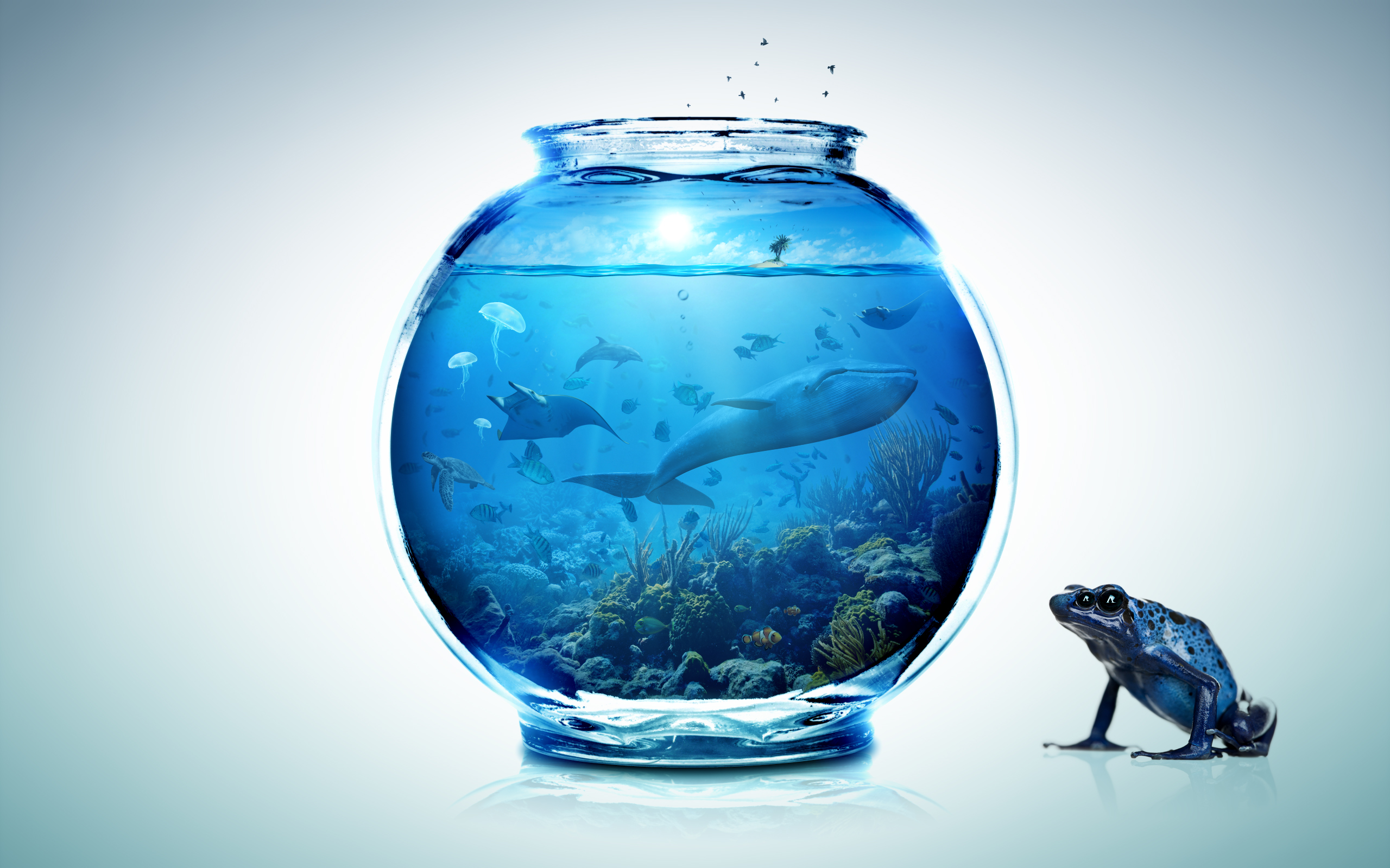 Small World 1 / Fishbowl by LAMBDA256