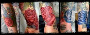 red n blue rose gap filling by BMXNINJA