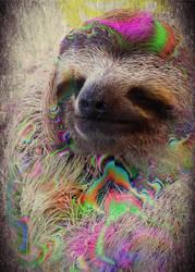 Acid Sloth