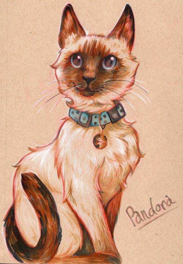Pandora - Pet Portrait commission by NynjaKat