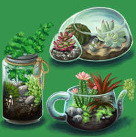 Terrariums by NynjaKat