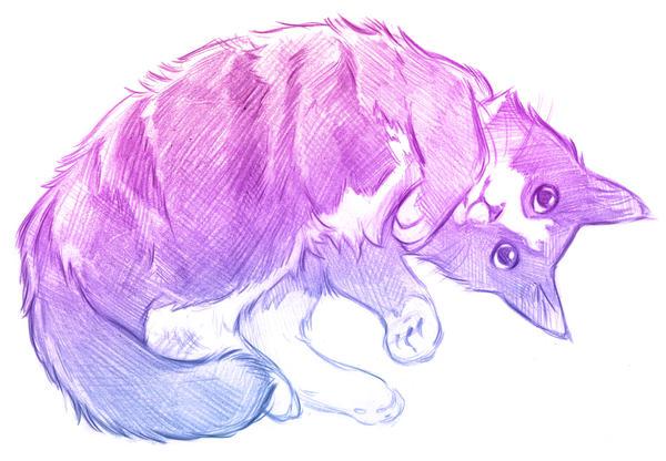 Pink Pet Sketch by NynjaKat