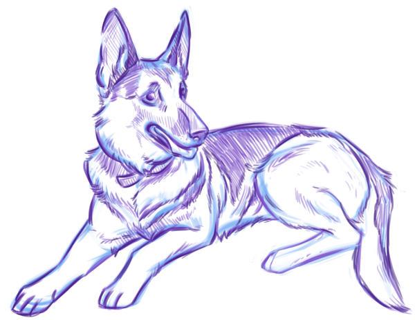 Pup Sketch by NynjaKat