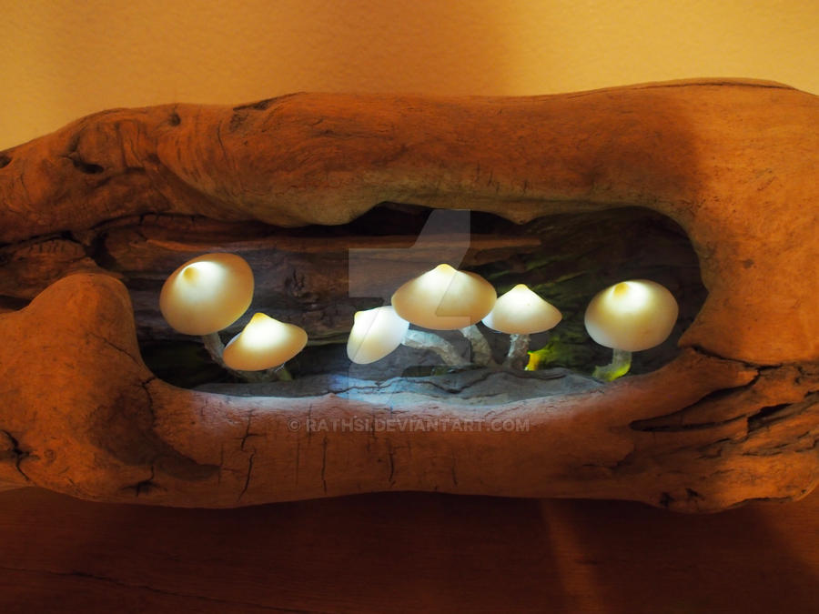 Mushrooms 1 by Rathsi