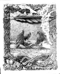 Of Ravens and Troll Socks