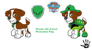 Paw Patrol Chester the Forest Protection Pup