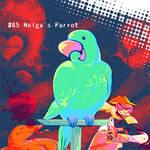 Helga's Parrot