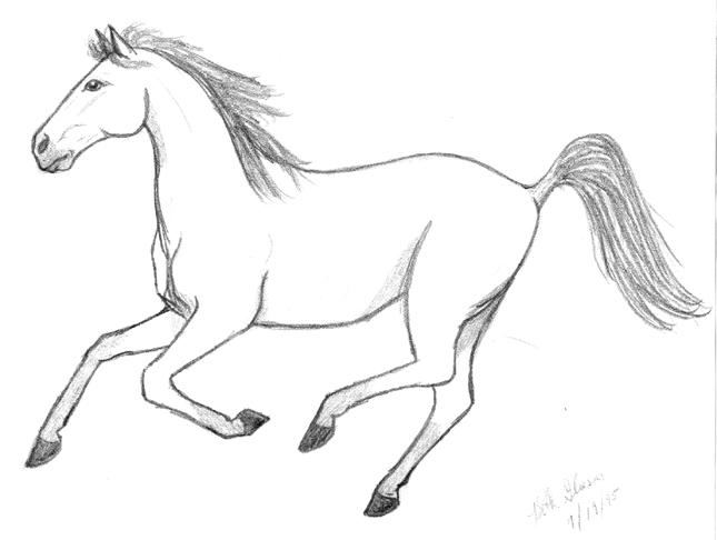 Images of Easy to Draw Horses a Easy Drawings of Horses