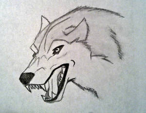 Angry Wolf #4
