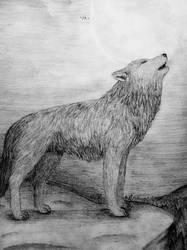 Lone Howl