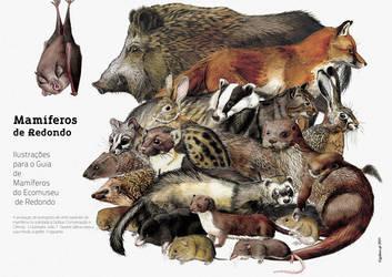 The Mammals of Redondo - miniposter by omnicogni