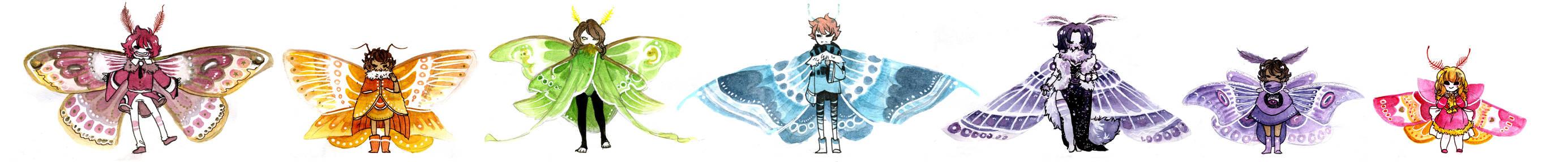 Moth Compilation