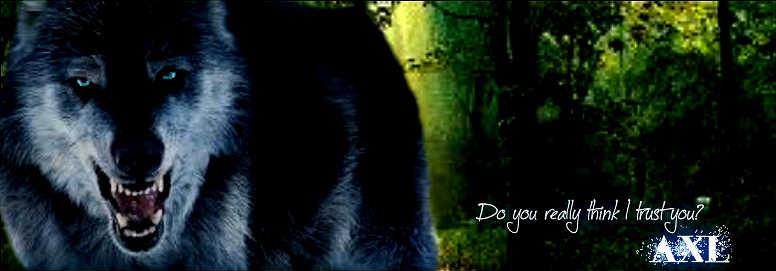 ~(*w*~) Guest chat(~*w*)~ Axl_s_signature_by_snowfurwolf-d5l0im2
