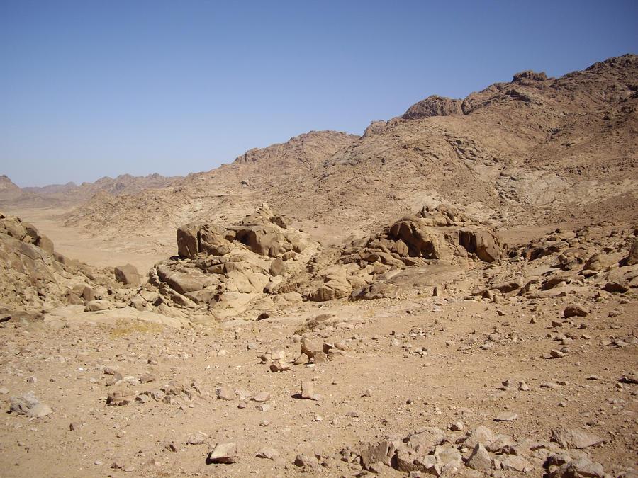 desert stock 5