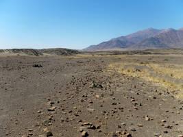 desert backgound stock 5 by HumbleBeez