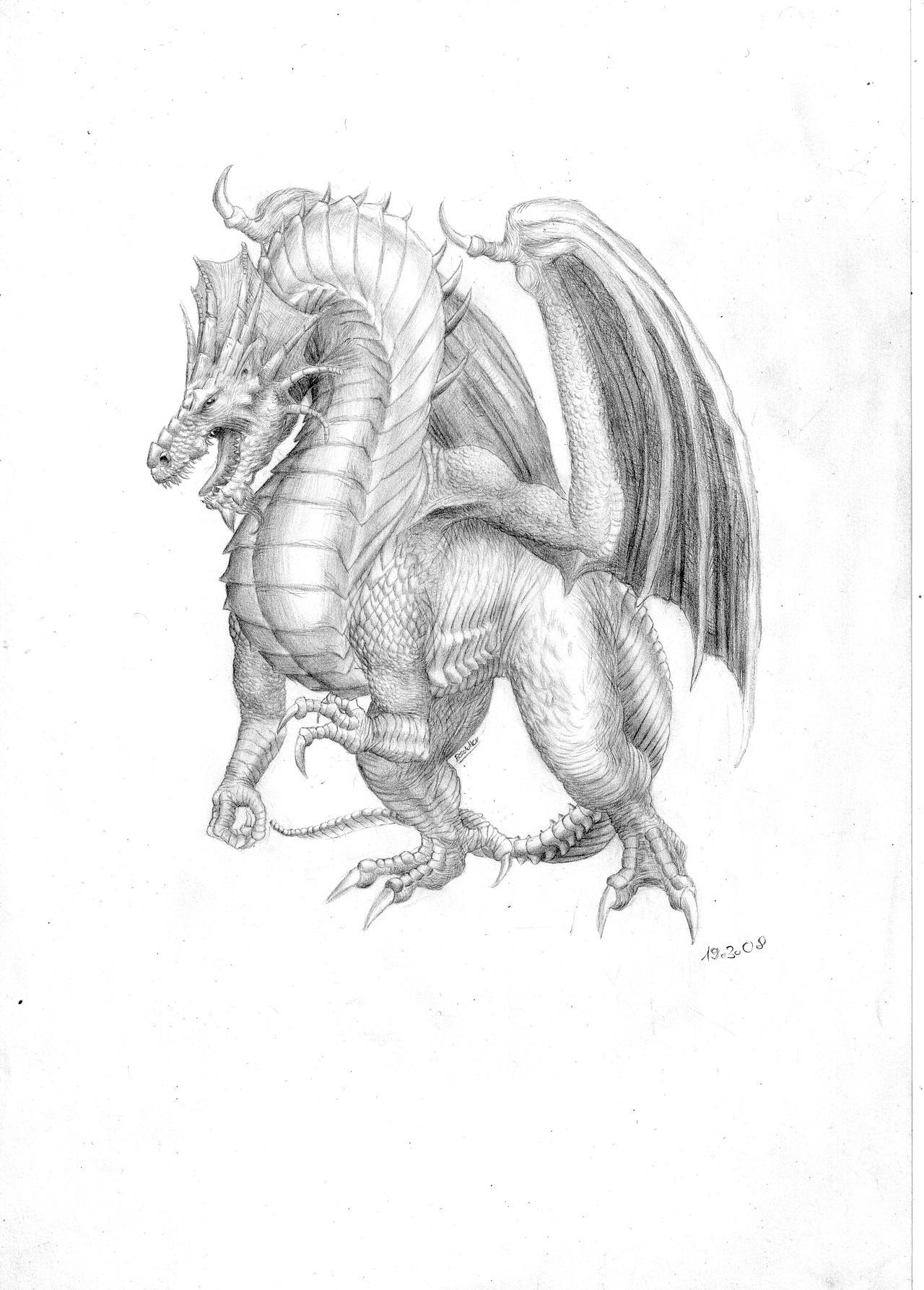 tabur the dragon of fury by SolidSake