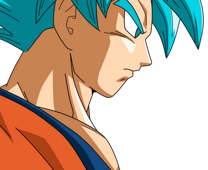 Goku SSJBLUE Profile