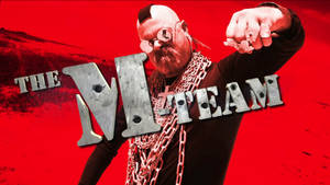 Jamie Hyneman as Mr T