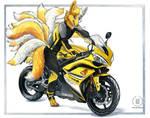 Foxy Bike