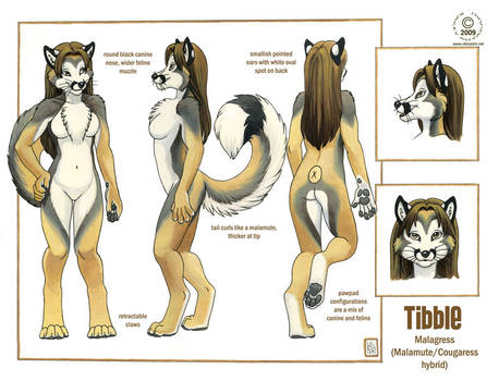 Tibble Reference