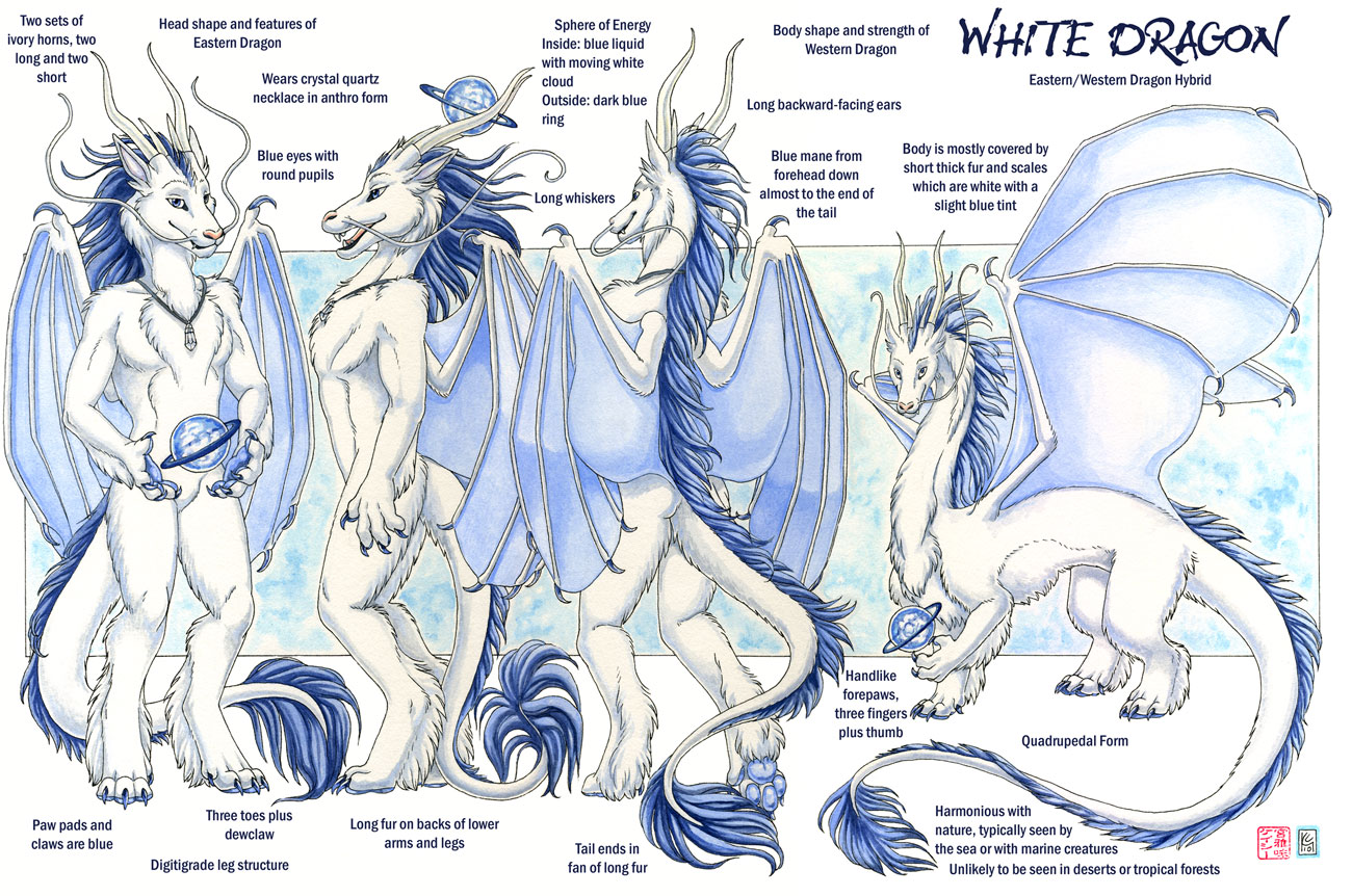 White dragon reference by kaceym on deviantart for Design reference sites