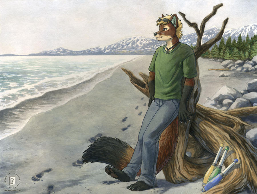 Alaskan Shore by KaceyM
