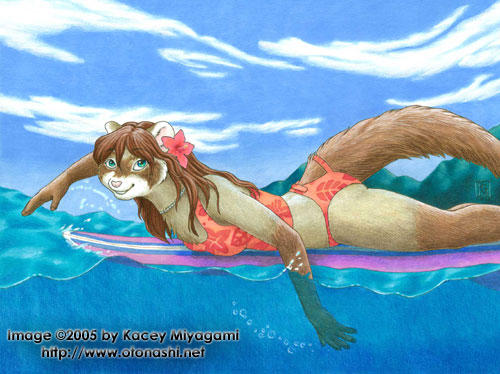 Surfing Ferret by KaceyM