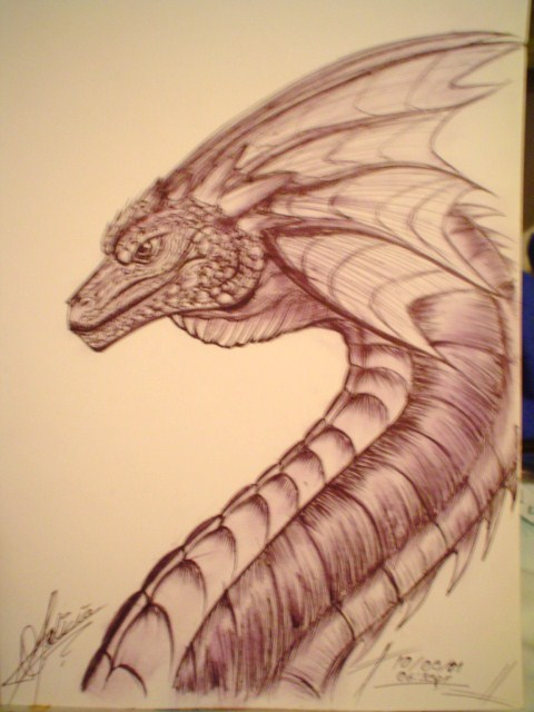 ( ( Dibujitos :3 ) ) Dragon_1_by_69darkfelicia69-d465haj
