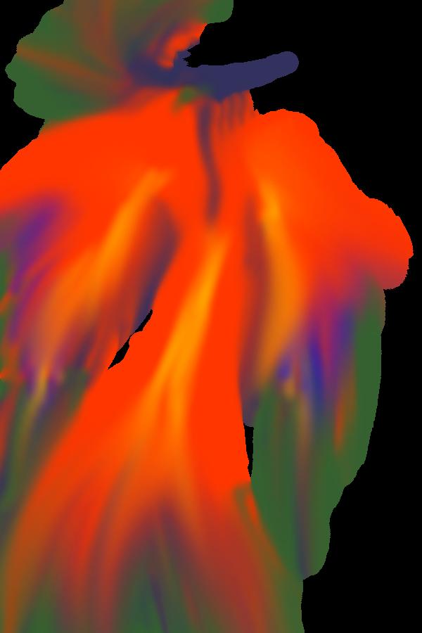 The light of a Phoenix by xXlove-killerXx